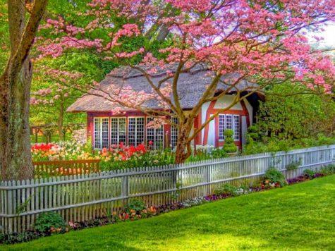 Выставка «Дом и сад» в Крокус-Экспо 2021